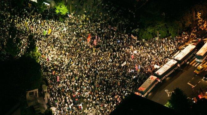 Hydrangea Revolution